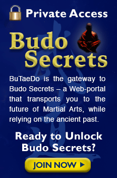 budo secrets private access