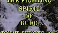 bushi shugyo
