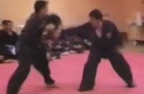 Eagle Martial Arts Hapkido Sparring/Technique Demo karate demonstration exhibition