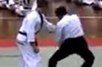2008 World Hapkido Championship-Lee Chang Soo karate martial arts demonstration exhibition reverse joint hand gyaku te