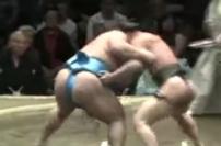 INCREDIBLE SUMO(98kgVS200kg)