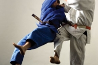 Master the Foot Sweep: Judo's Secret Weapon Gary Goltz thomas tom davies gentle way judo