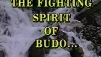The Fighting Spirit of Budo Koei Kan karate do bushi shugyo austerity training featured o'sensei brian frost masters sensei sabat ciser mason spearing shihan