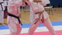 Tai Kai 2017 — Nijin Goshin Jittsu - Gyaku-Te — SloMo Close-ups sensei jack m sabat shihan reverse joint
