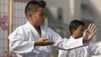 7 Reasons Why Your Child Should Practice Martial Arts Eric C. Stevens - Coach -  Denver, Colorado, United States - Martial Arts, Sport Psychology, Boxing