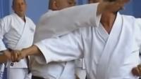 shito ryu history