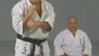 shorin ryu kata application