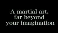 shoto kan secret real karate hidden ancient martial art arts technique