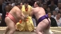 sumo tournament competition butaedo budo secrets