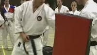 wado ryu master techniques demo