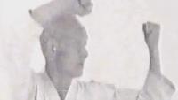 wado ryu master kata demo